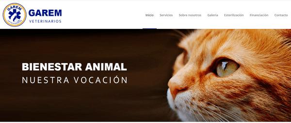 clinica veterinaria economica